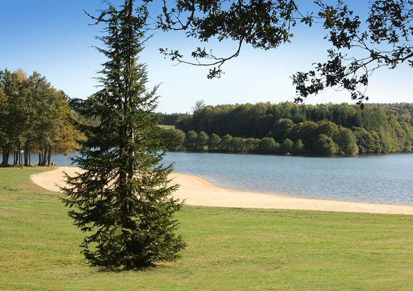 furnished studios apartments and tree houses properties for sale luxury resort in nouvelle aquitaine
