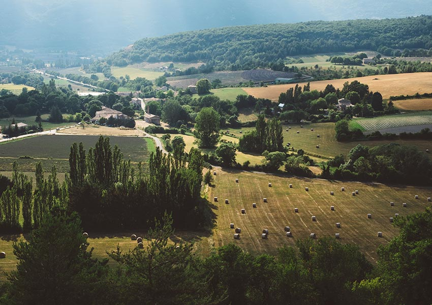 Buying Property in France Countryside Green unspoilt nature