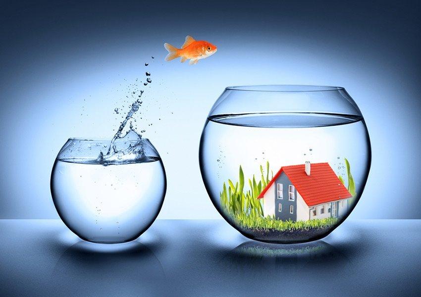 Mettre une maison de vacances en location : 7 conseils pour obtenir un meilleur rendement